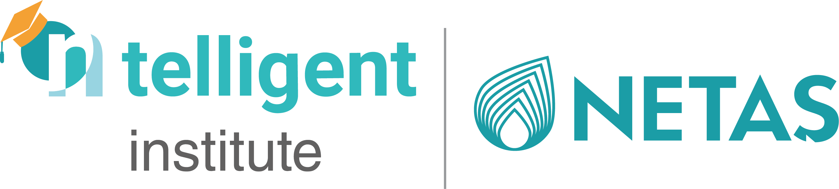 ntelligent institute logo
